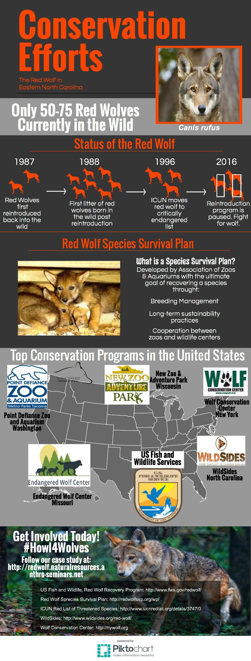 conservation-efforts-FINAL